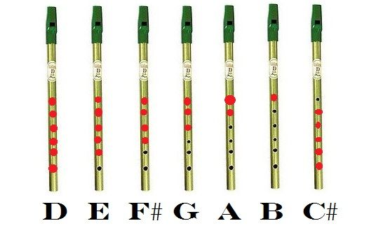 What are the Tin Whistle notes for Galway Girl - answers.com