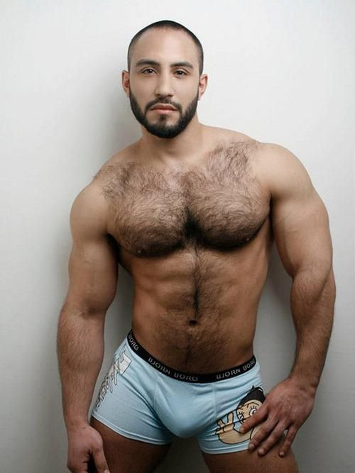 Hot gay hairy men — img 4