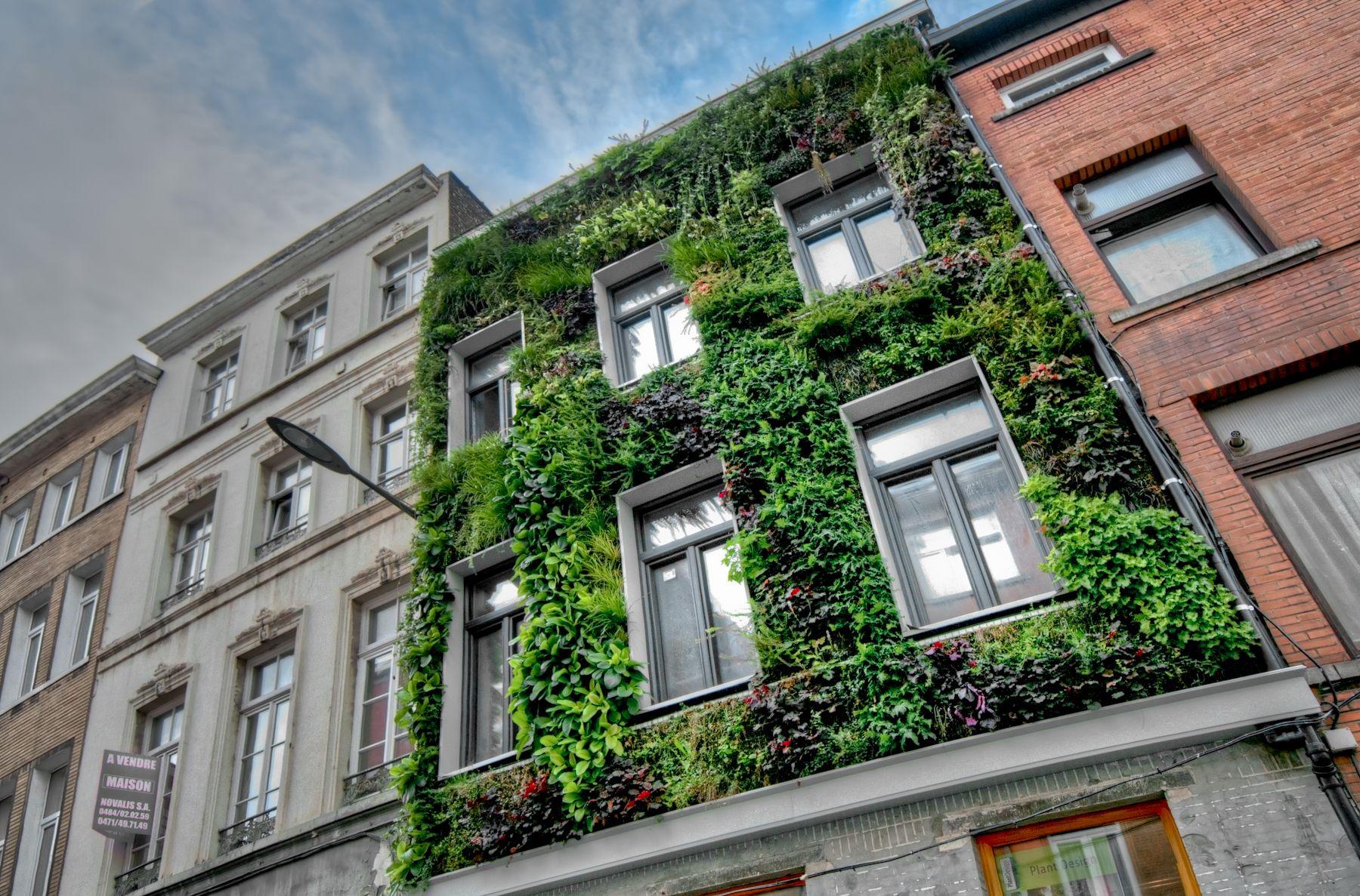 Murs végétaux extérieurs | PlantDesign (Bruxelles, Belgique ...