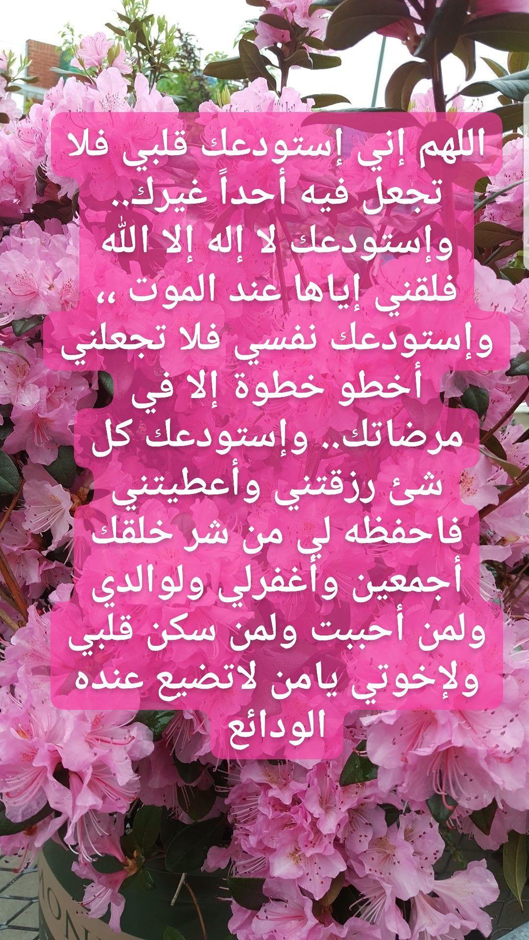 Pin By The Noble Quran On I Love Allah Quran Islam The Prophet Miracles Hadith Heaven Prophets Faith Prayer Dua حكم وعبر احاديث الله اسلام قرآن دعاء Arabic Quotes Allah Islam