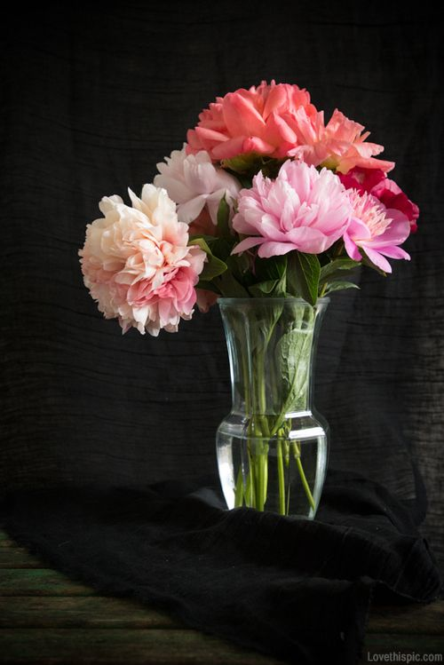 Vase Of Flowers Girly Photography Flowers Pretty Photography