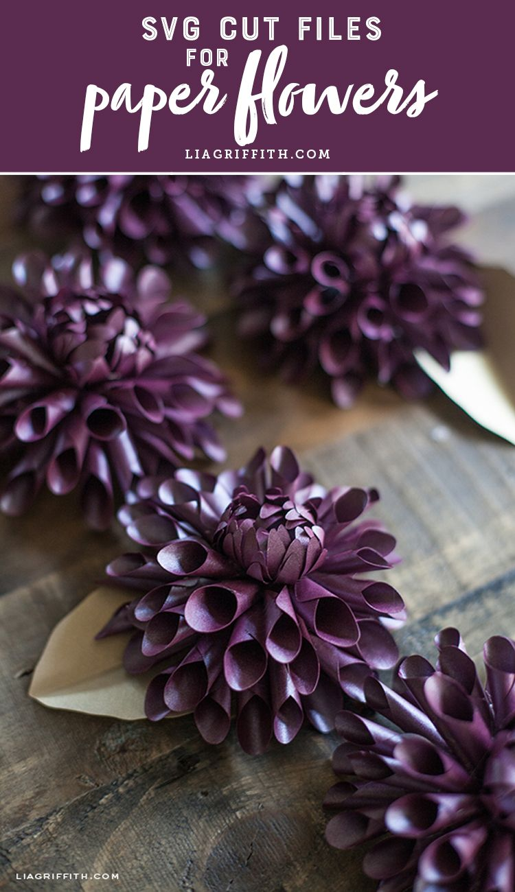 Paper flower svg cut files learn how to make paper flowers today find dozens of svg flowers to make your crafting easier mightylinksfo Gallery