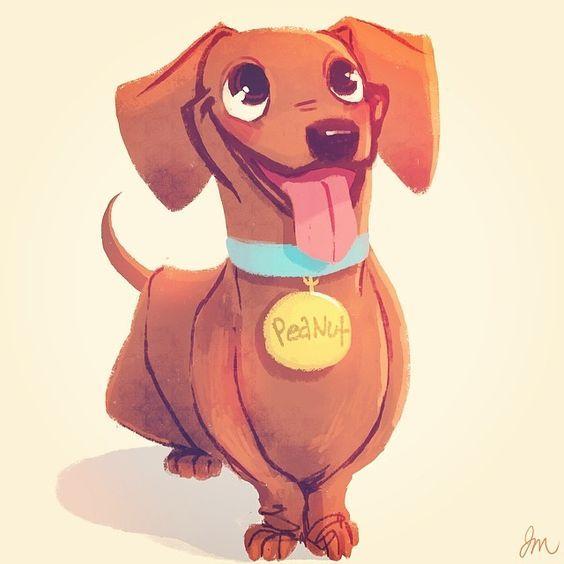Dachshund Clube Dachshund Drawing Dog Illustration Dachshund Art