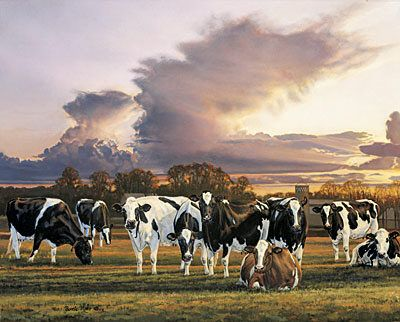 34 Best Bonnie L. Mohr And Other Artists Artwork Images On Pinterest   Cow  Art, Farm Art And Country Art