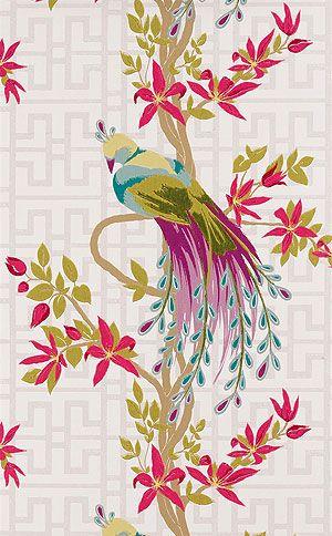 tapete mit papagei Englische Tapete Nina Campbell PARADISO Vögel