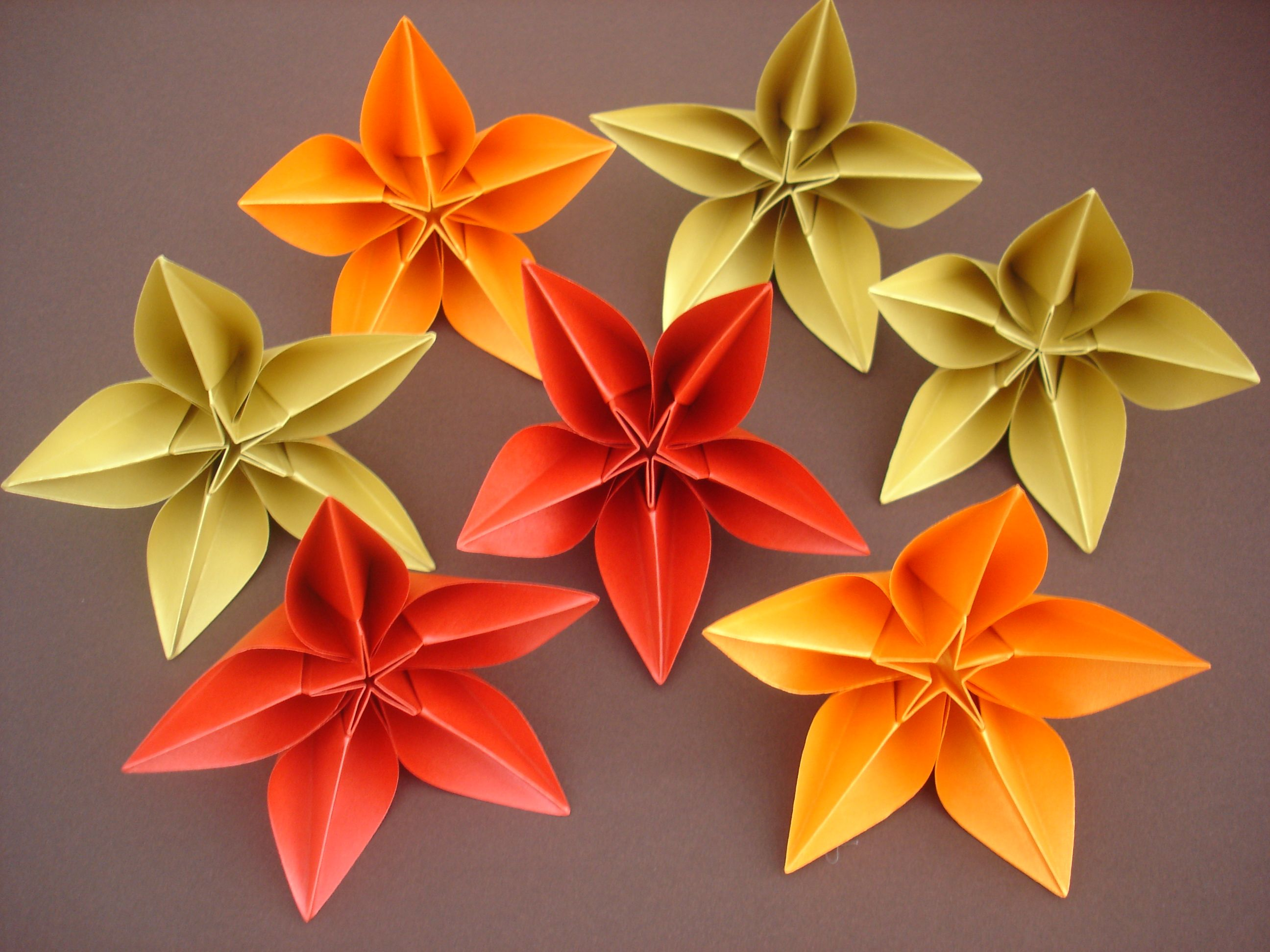 Origami Carambola Carmen Sprung Wedding Ideas Pinterest