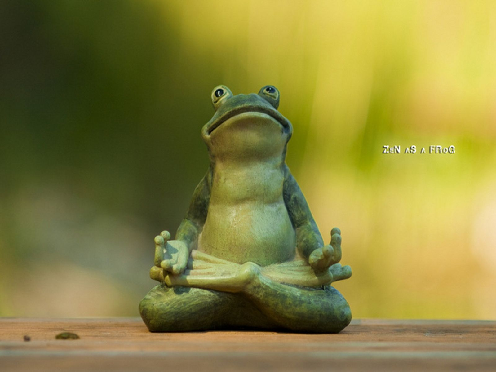 30 best zen critters images on pinterest frog statues frogs and