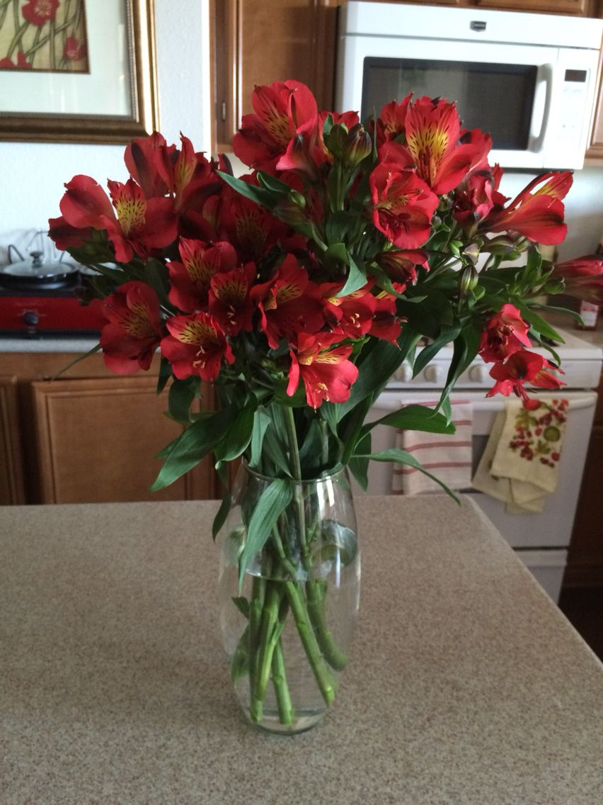 If you\'re on a budget, but love fresh flowers visit stater brothers ...