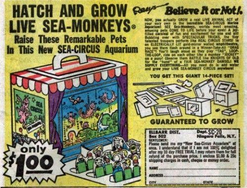 We Love These 1960s Advertisements For Sea Monkeys Sea Monkeys Is A Brand Name For Brine Shrimp Harold Von Brau Sea Monkeys Book Advertising Old Comic Books