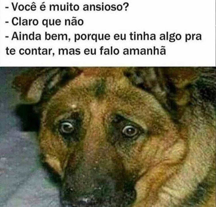 Tumblr In 2020 Funny Dog Memes Funny Spanish Memes New Memes