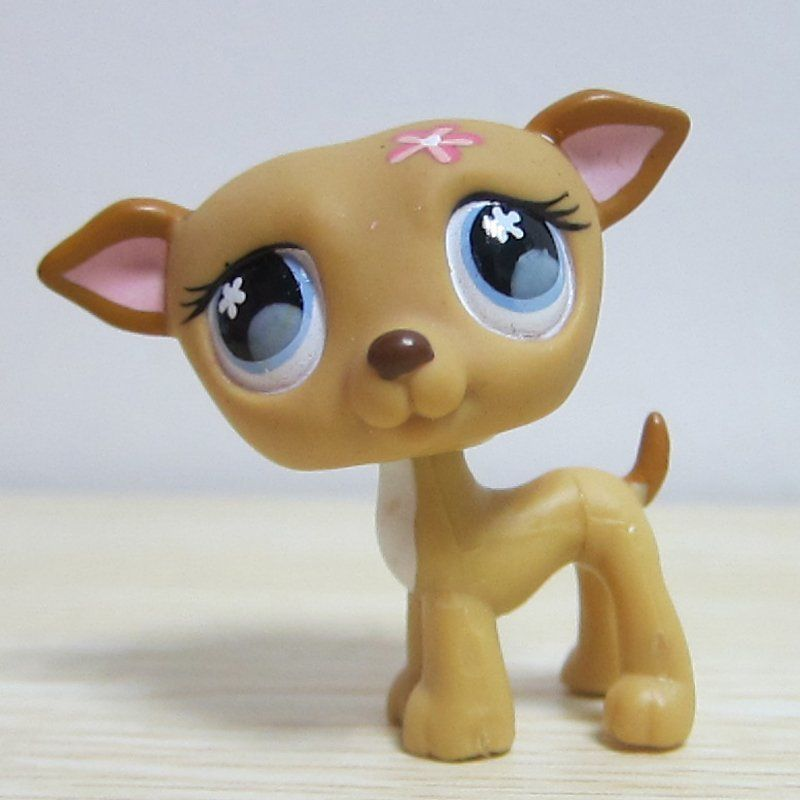 Hasbro Littlest Pet Shop Collection LPS Figure Loose Toy Super Rare Dog Puggy #Hasbro