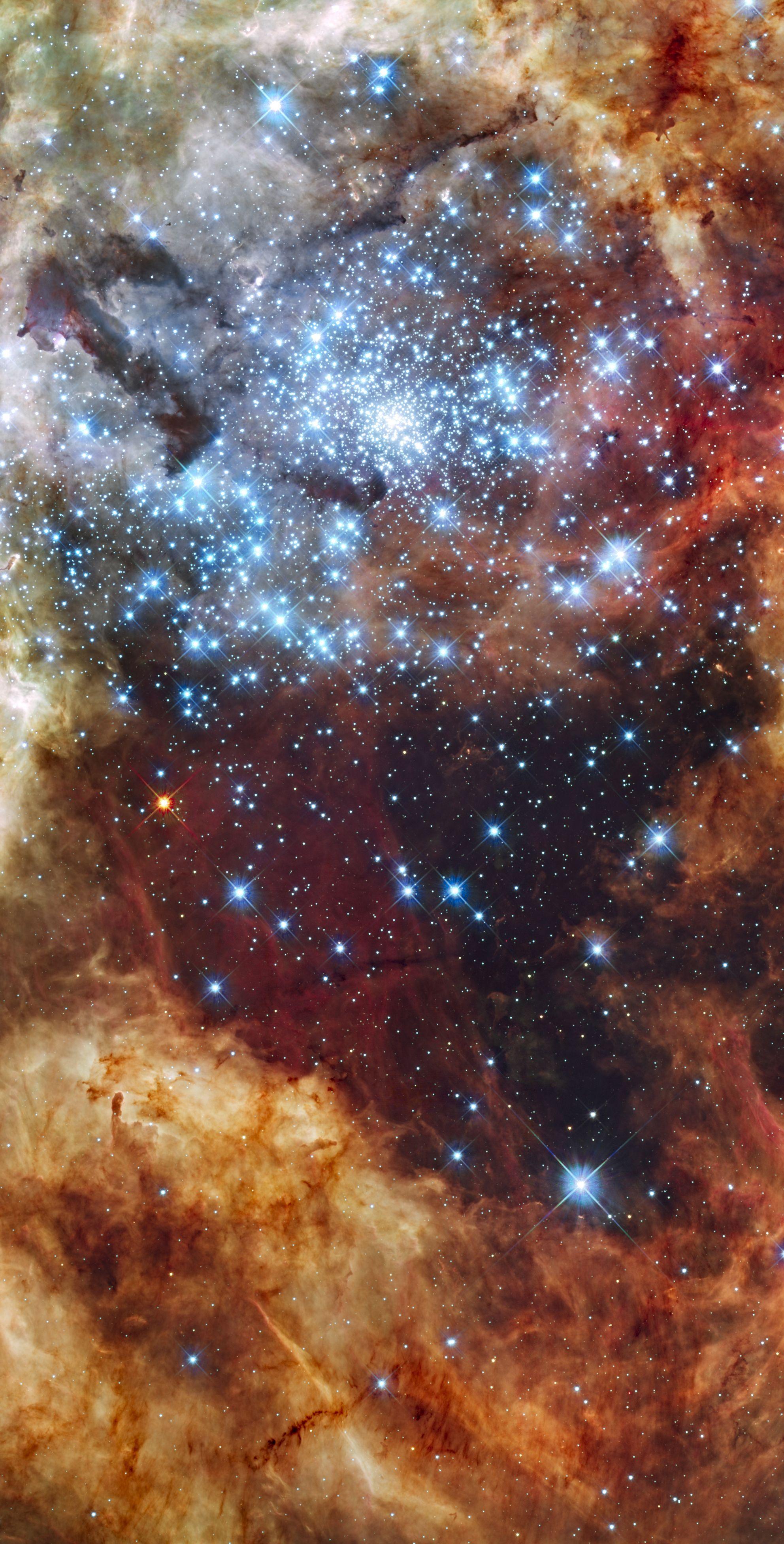 r136 star cluster