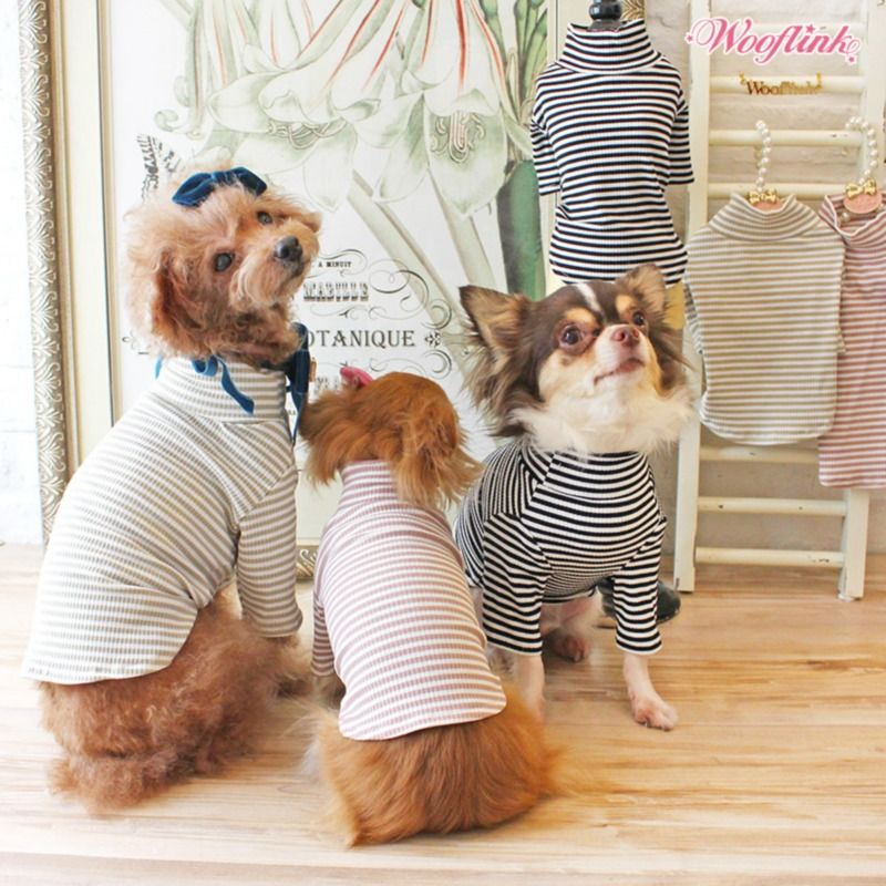 Black Turtleneck Dog Tee (Size 1) is part of Black Turtleneck Dog Tee Size  Teacups Puppies Boutique - Black Turtleneck Dog Tee (Size 1) The Turtleneck Dog Tees from Wooflink feature an adorable colored stripes pattern on lightweight ribbed fabric  Han