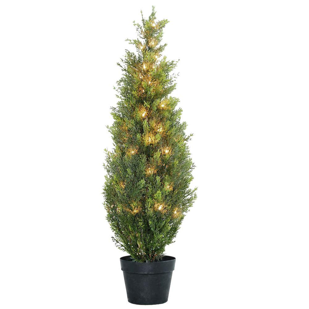 in arborvitae in green growerus pot with clear lights tree