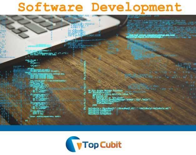 Software Companies In Noida Sector 63 Web Development Application Development Web Development Company