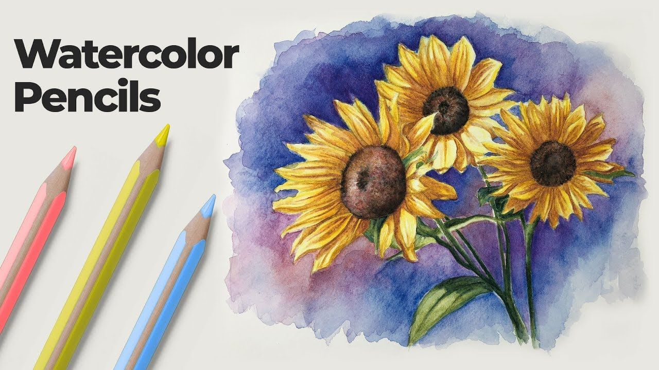 How To Use Watercolor Pencils Techniques And Demonstration