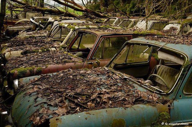 Junkyard near Bern, Switzerland. | Abandoned cars ...