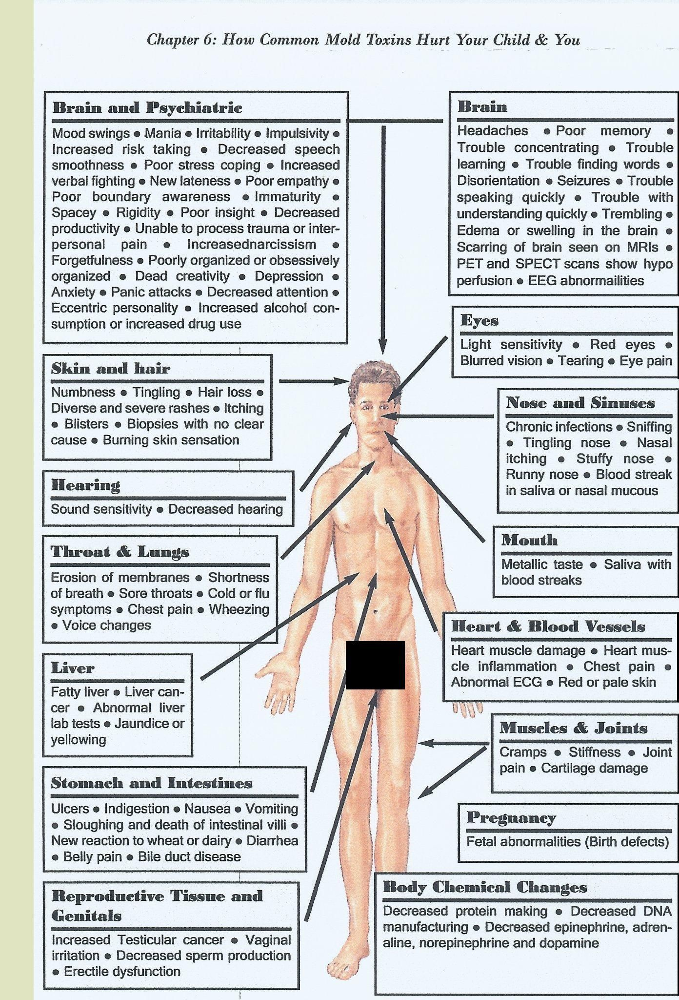 Mold Health Symptoms