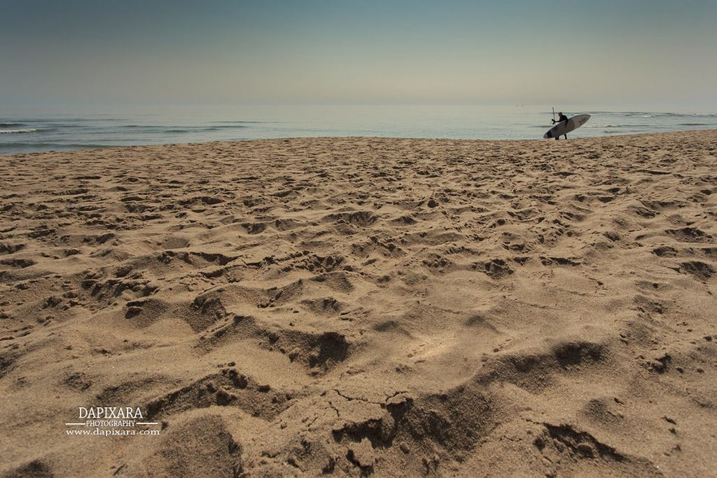 Surfer at Coast Guard Beach | The Official Dapixara Blog - Cape Cod Photos