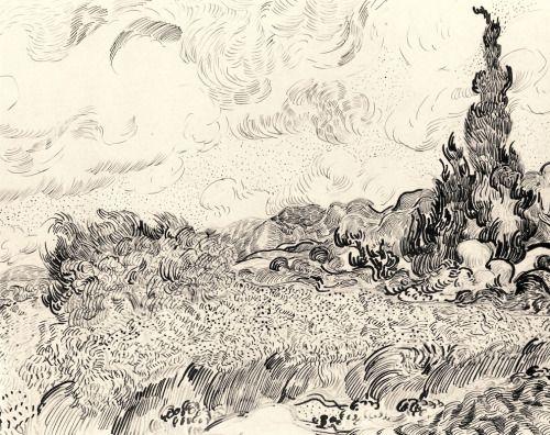 kafkakitty:  Van Gogh's sketch of cypresses