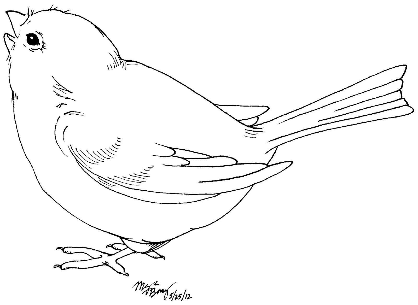 Pin von Sabine Harndorf auf Colouring Page | Pinterest | Vogel ...