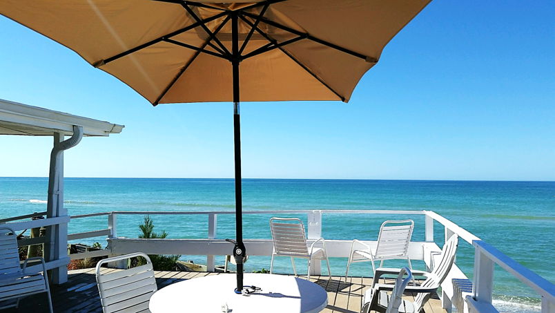 The only thing missing from this photo is you! | Florida ...