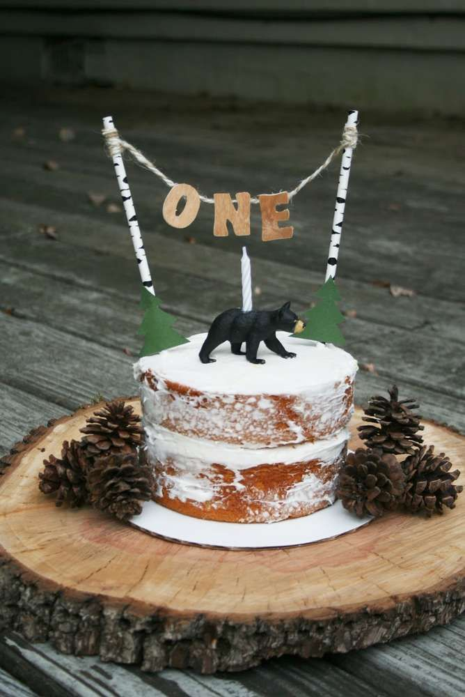 Lumberjack Birthday Party Ideas Rustic CakeBaby Boy 1st