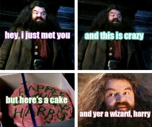 Pin By Trolling Girl On Harry Potter Call Me Maybe Always Harry Potter Harry Potter Jokes