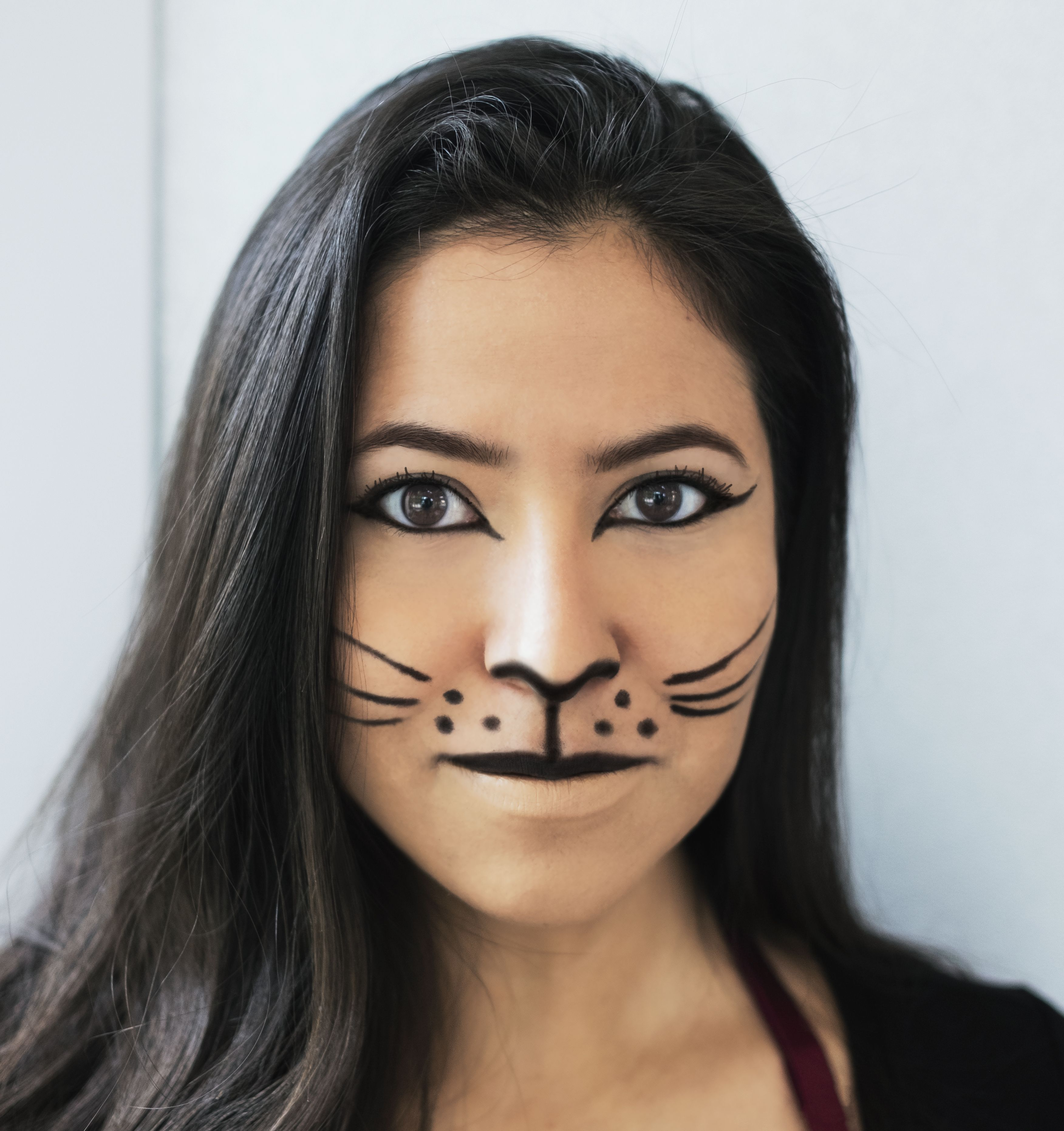 Easy Cat Halloween Makeup Cat Halloween Makeup Halloween Makeup Easy Tiger Makeup