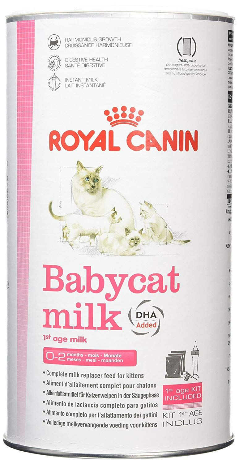 Royal Canin Canned Cat Food Mother And Kittens Babycat Formula1st Stage Loaf In Sauce Pack Of 24 3 Ounce Cans W Canned Cat Food Kitten Food Feline Health