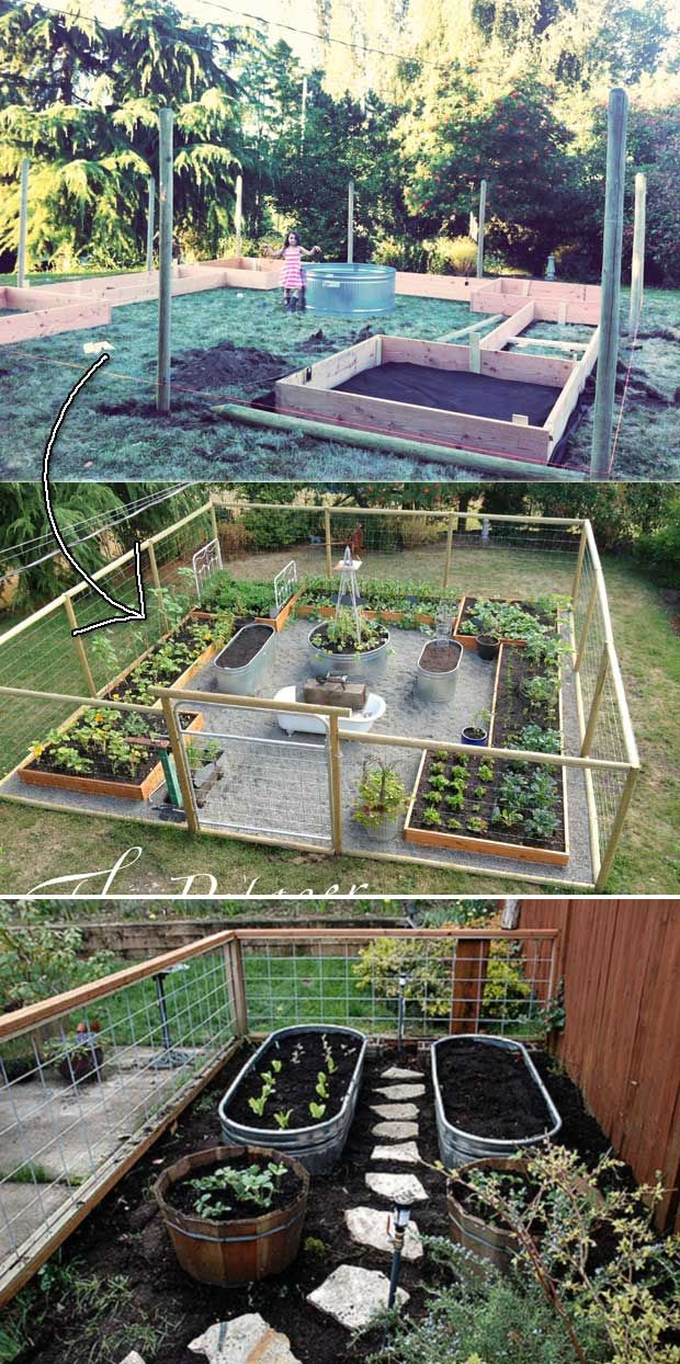 Galvanized Water Troughs And Cedar Boxes Turned Into Vegetable Garden With Gravel Path Vegetable Garden Raised Beds Building A Raised Garden Garden Layout