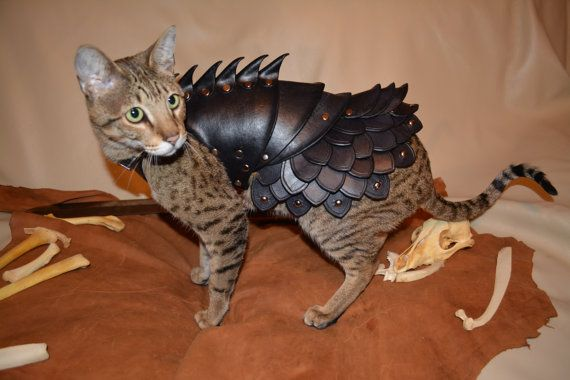 Cat Battle Armor by schnabuble on Etsy! It's what all the best dressed warrior kitties are wearing.