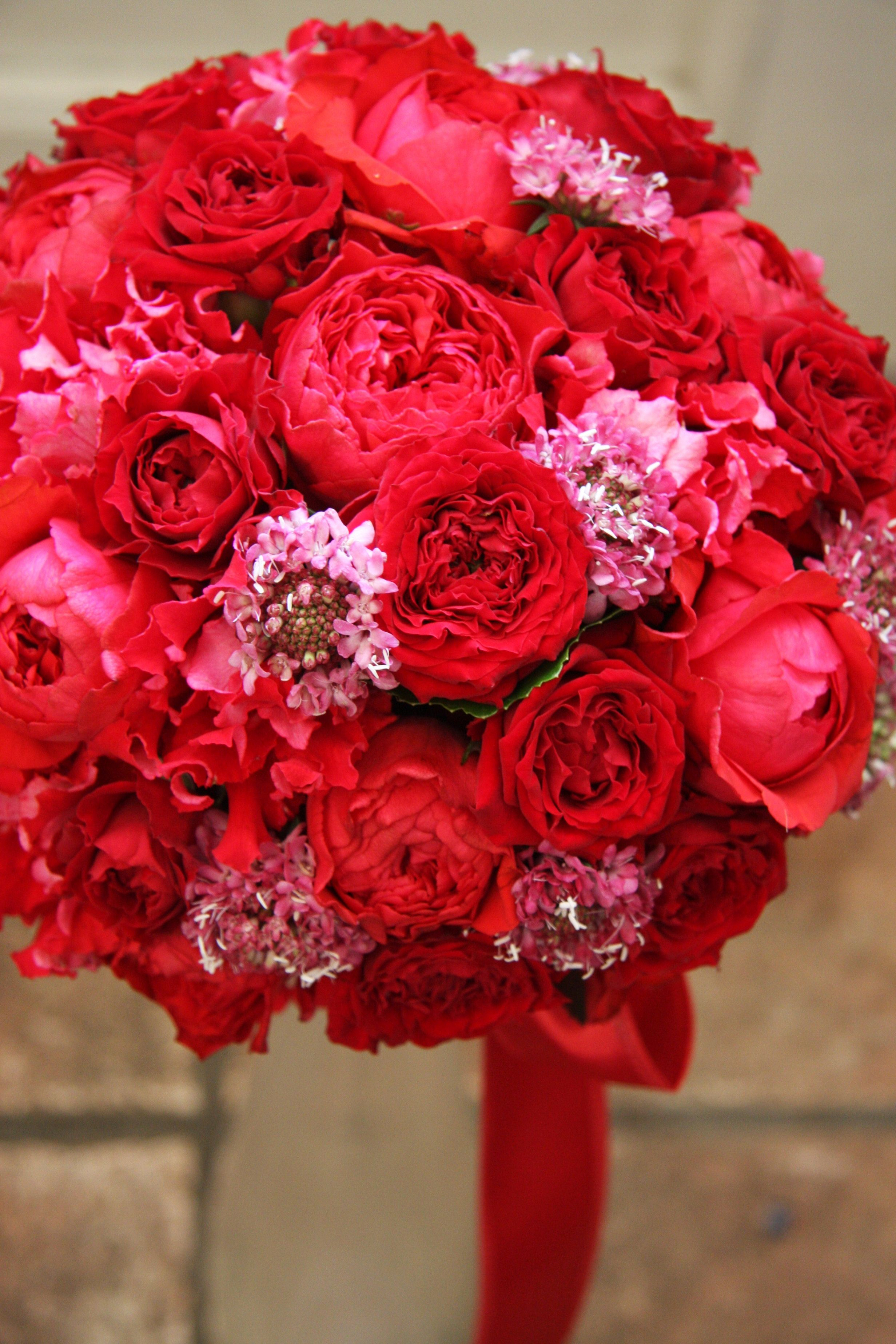 Pin By Stephanie Rodriguez On Red And Pink Not Just For