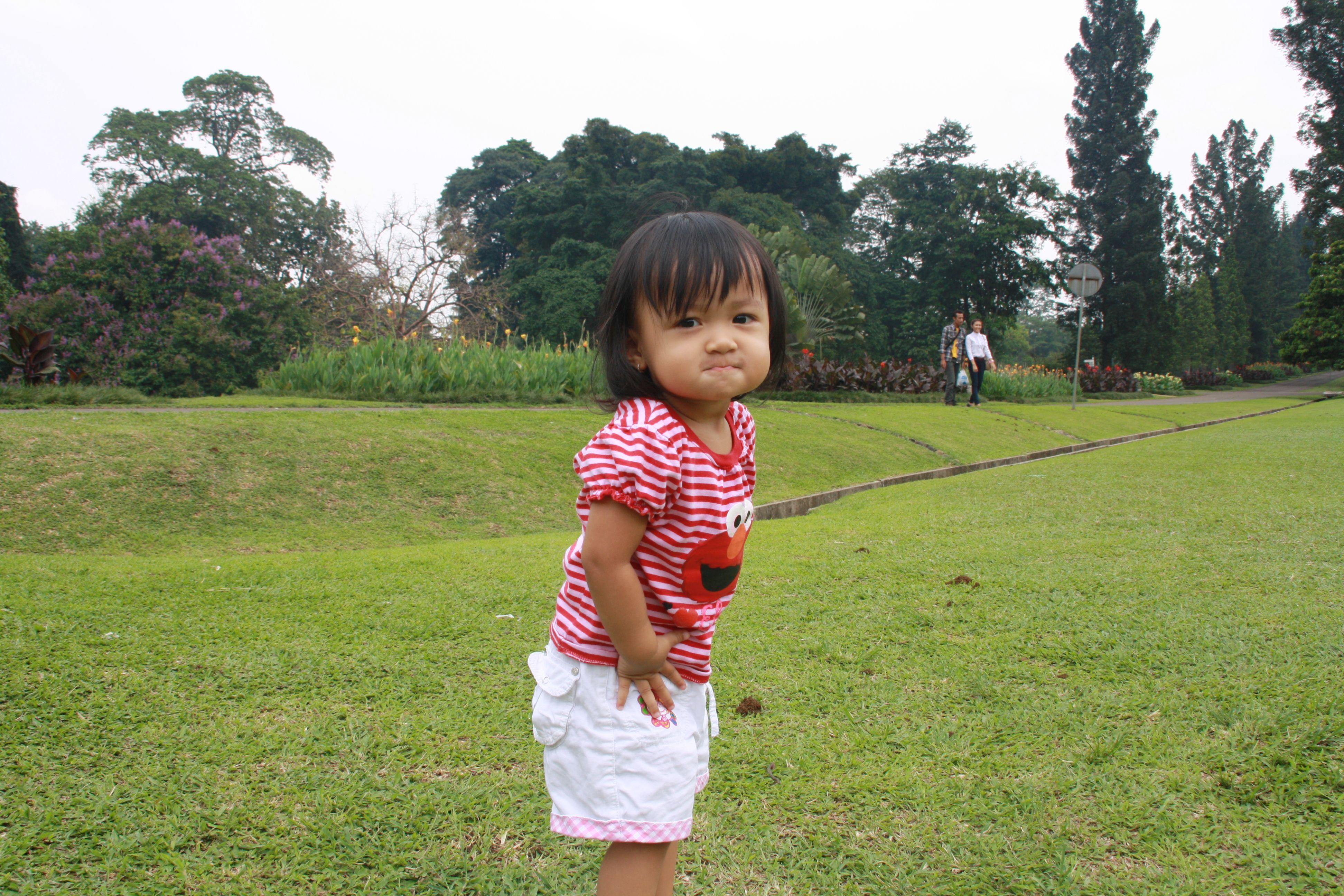 Bogor botanical garden, Indonesia