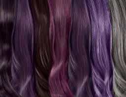 Image result for ion permanent hair color chart intense violet also rh pinterest