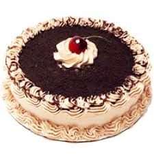 Are you in search of top-quality and affordable Online Exclusive Black Forest from TAJ Shopping