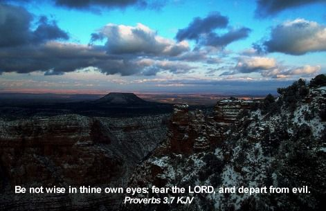Be not wise in thine own eyes: fear the LORD, and depart