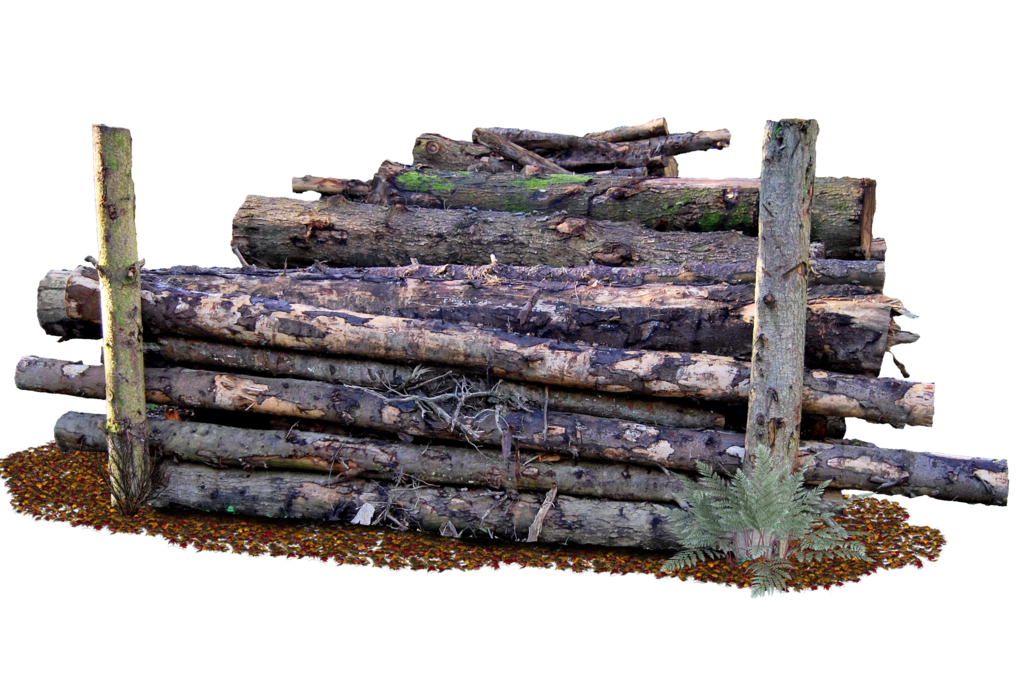 Sell My Logs Washington Forestry Companies Washington Forestry Consultants Washington Visit At Http Cedarlandforestreso Wood Png Wooded Landscaping Timber