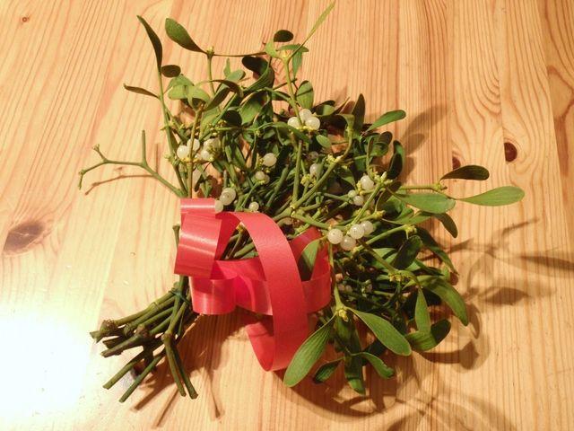 ヤドリギとクリスマスとキスの関係とは?意味、由来について。 | クリスマスとイルミネーション情報NET!