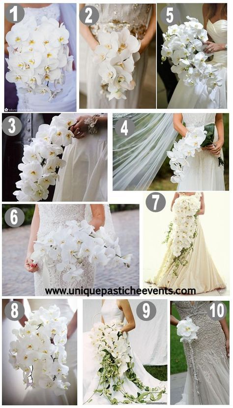 10 White Orchid Wedding Bouquet Ideas And The Only Way To Do A Cascading Bouquet White Orchid Bouquet Orchid Bouquet Wedding Orchid Wedding