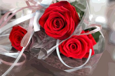 a single rose <3