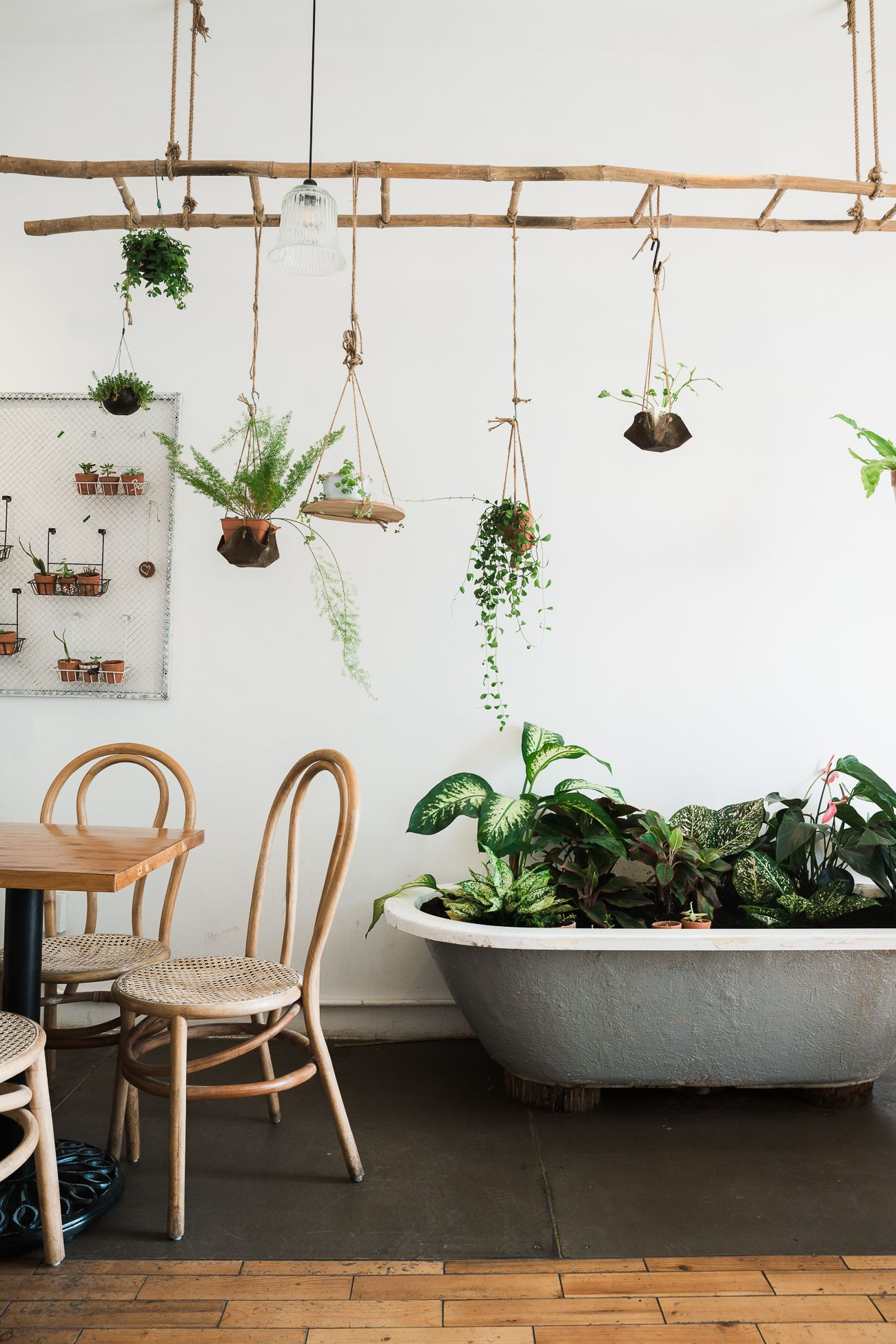Inspiration d co l invasion des plantes vertes for Deco interieur plante verte
