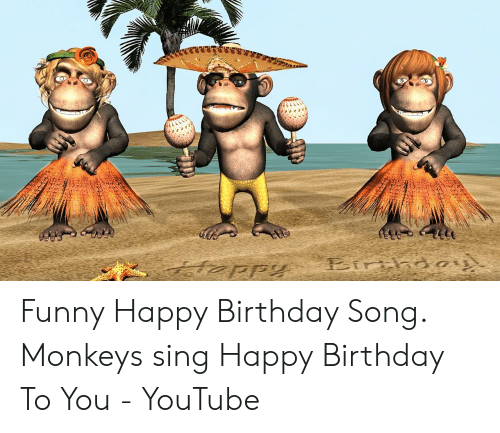Funny Happy Birthday Song Monkeys Sing Happy Birthday To You Youtube Birthday Mem Funny Happy Birthday Song Happy Birthday Song Happy Birthday Song Youtube
