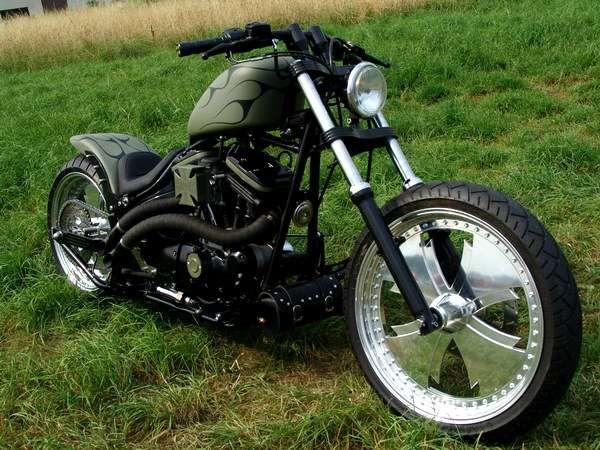 Harley - show bike harley