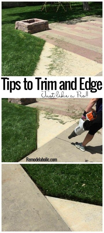 Lawn Maintenance: Trim and Edge your Yard like a Pro