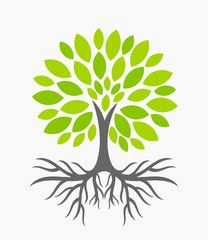 tree with roots tree with roots pinterest roots silhouettes rh pinterest com transparent tree roots clip art tree root clip art