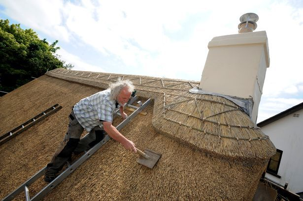 Welsh Thatcher Seeks Apprentice To Carry On The Trade Thatched Roof Thatched Cottage Thatch