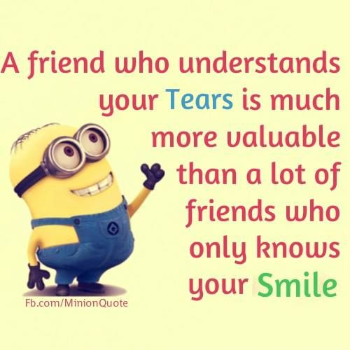minions explained best friend quotes funny quotes friendship
