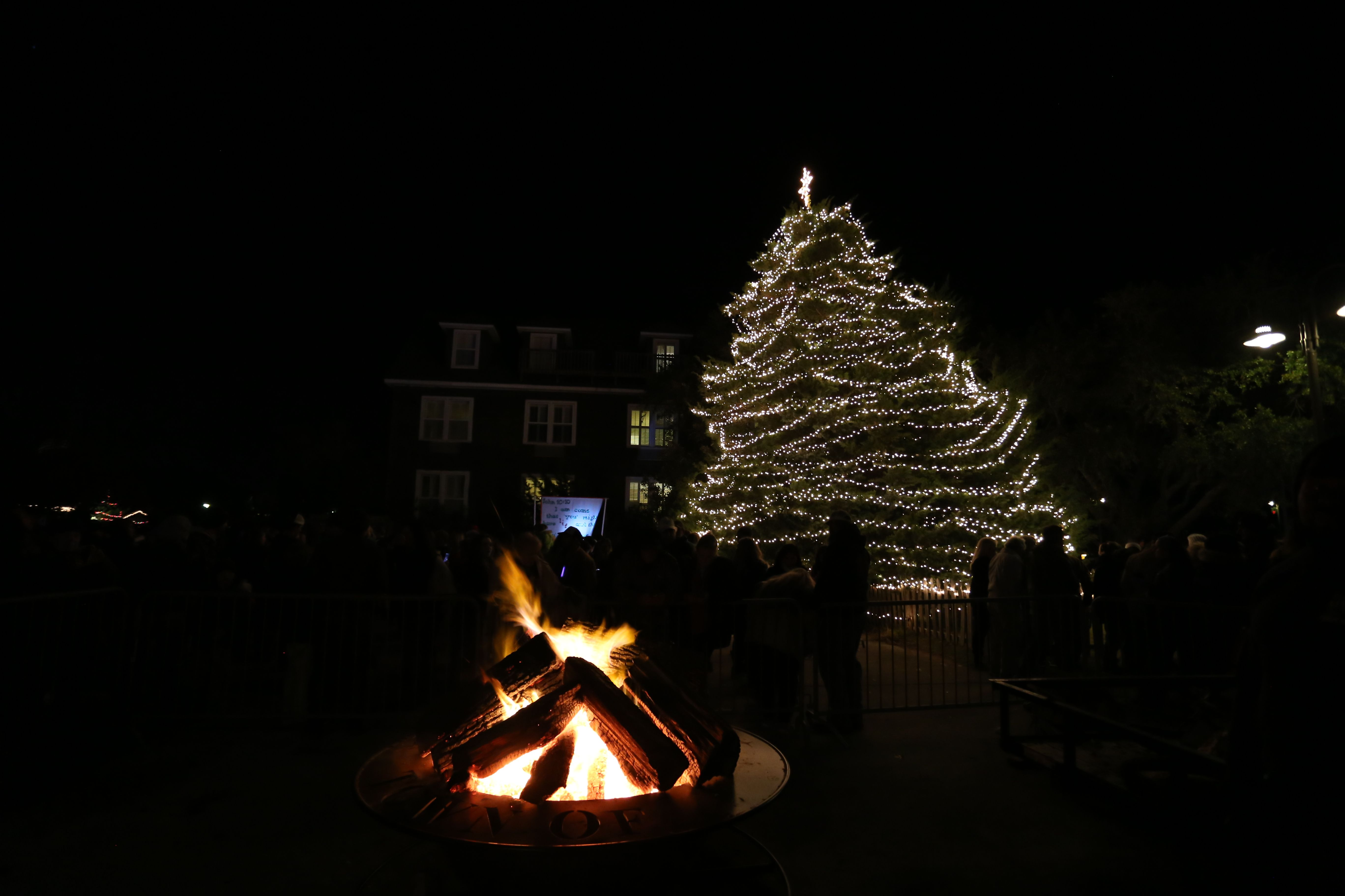 Christmas in Manteo on the Outer Banks, NC is like being in a post ...