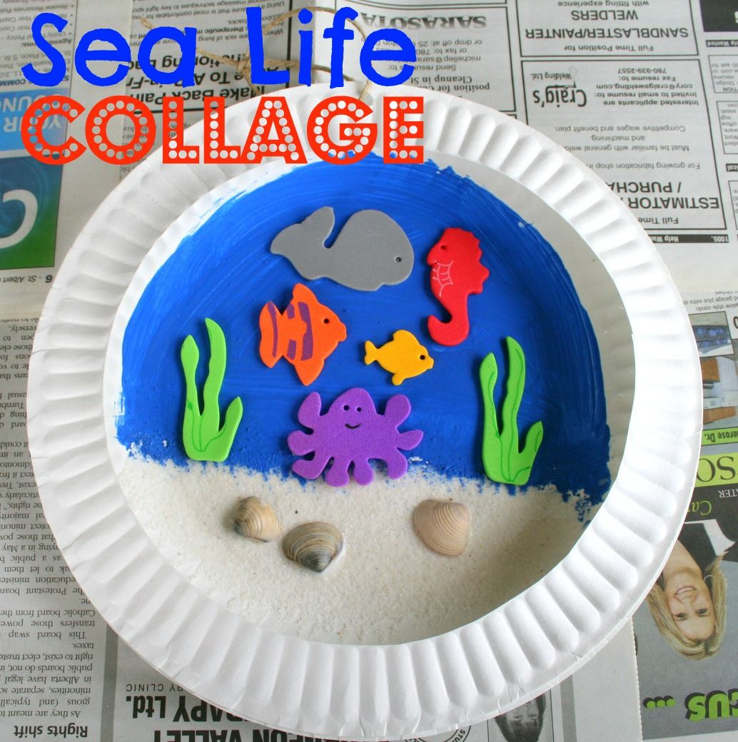 Beach Craft Ideas For Kids Part - 39: Design Dazzle: Summer Camp: Backyard Day At The Beach. Paper Plate CraftsPaper  PlatesPreschool CraftsPreschool IdeasKids ...